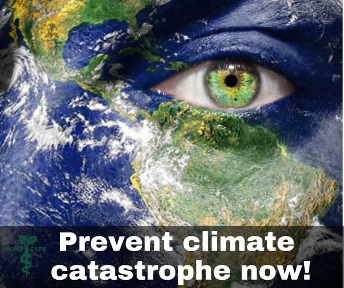 Prevent Climate Catastrophe Now